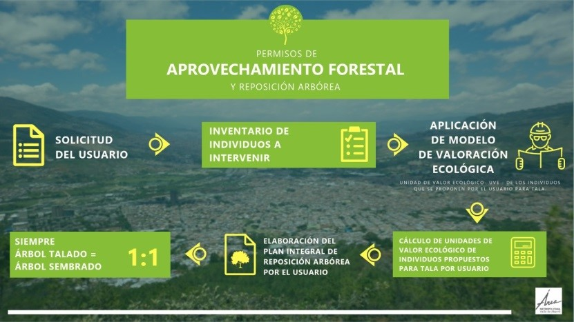 aprovechamiento-forestal-1.jpg