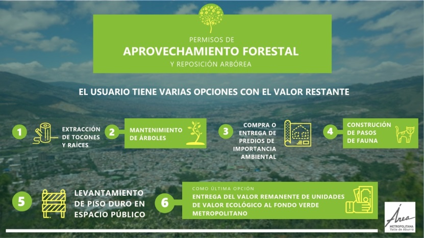 aprovechamiento-forestal-2.jpg.png